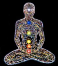 Healtharian Concepts